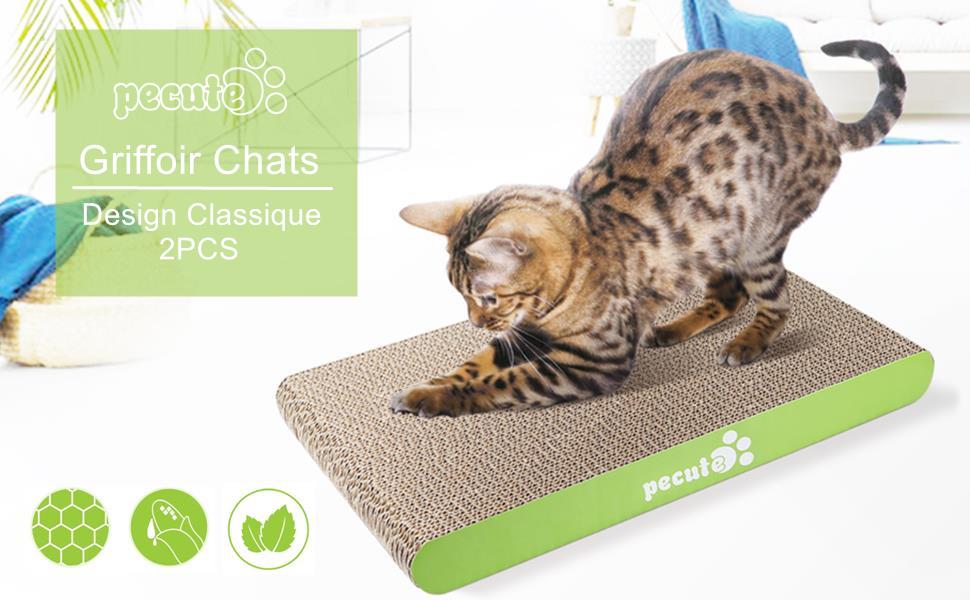 pecute griffoir chats