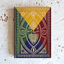Hogwarts House Colours Kindle Paperwhite Case