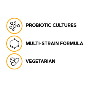 A multi-strain, vegetarian formula with probiotic cultures