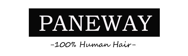paneway logo