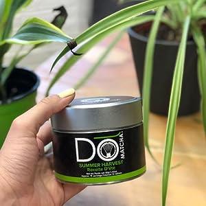 DoMatcha Green Tea