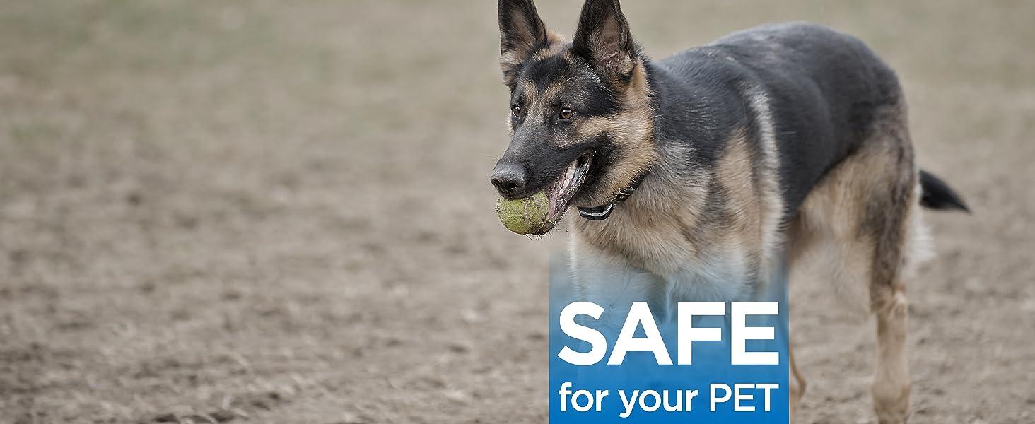 Safe and Humane training modes
