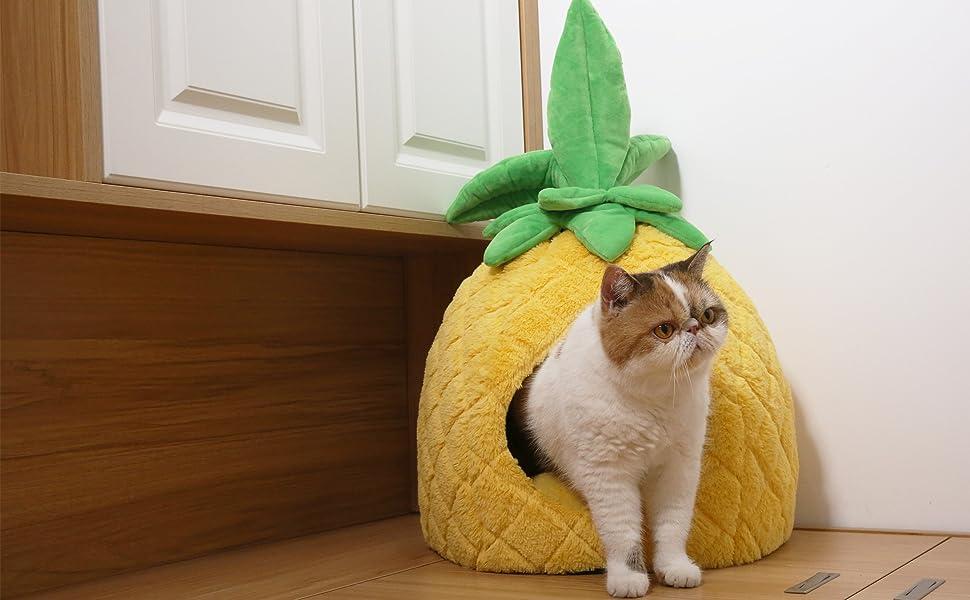 PETNPURR pineapple pet bed