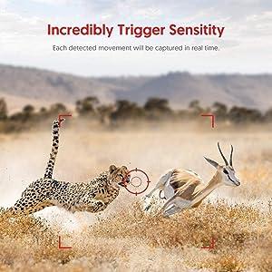 3 of Passive Infrared Sensors