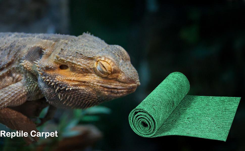 reptile carpet