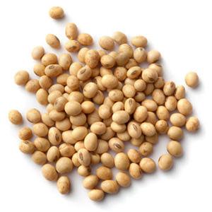 hydrolysed soybean fiber for advanced night cream