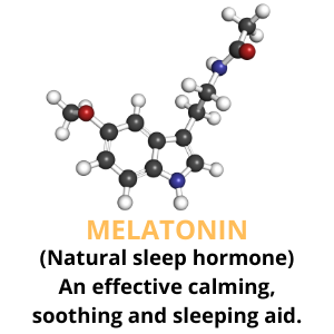 melatonin for dogs sleeping aid chews