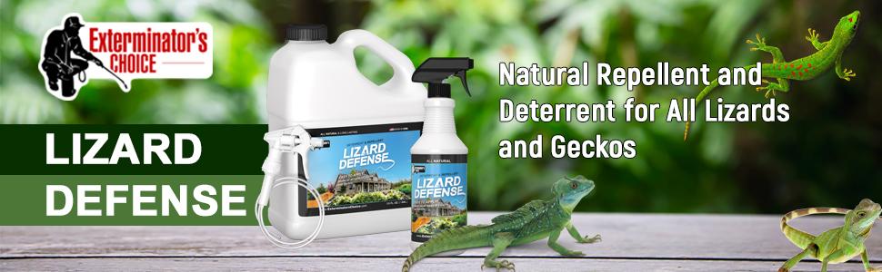 Outstanding Amazon Com Exterminators Choice Lizard Defense Natural Machost Co Dining Chair Design Ideas Machostcouk