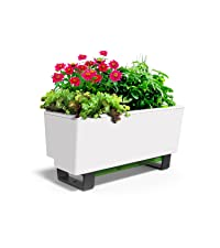 Mini bench, glowpear, self watering, self watering planter, planter, white planter, kitchen garden