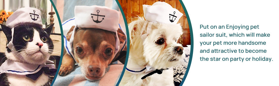 dog sailor hat