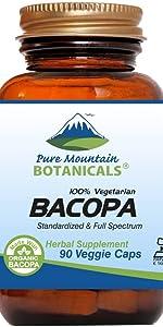 ginkgo biloba herb herbal organic herbs kosher dietary supplements pure fresh vegan best great men