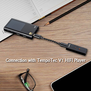 Connection with TempoTec V1 HIFI Player