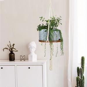 plant hanger holder