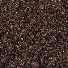 fresh planting soil