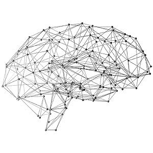 brain organic bioverfügbarkeit cbd liquid boon