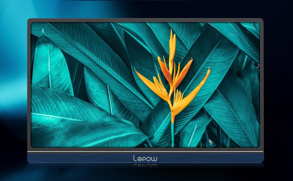 portable monitor Lepow
