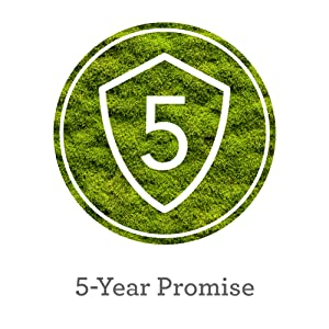 5 year promise