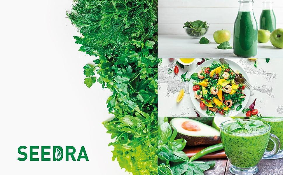 seedra heirloom culinary herbal seeds non gmo vault indoor outdoor