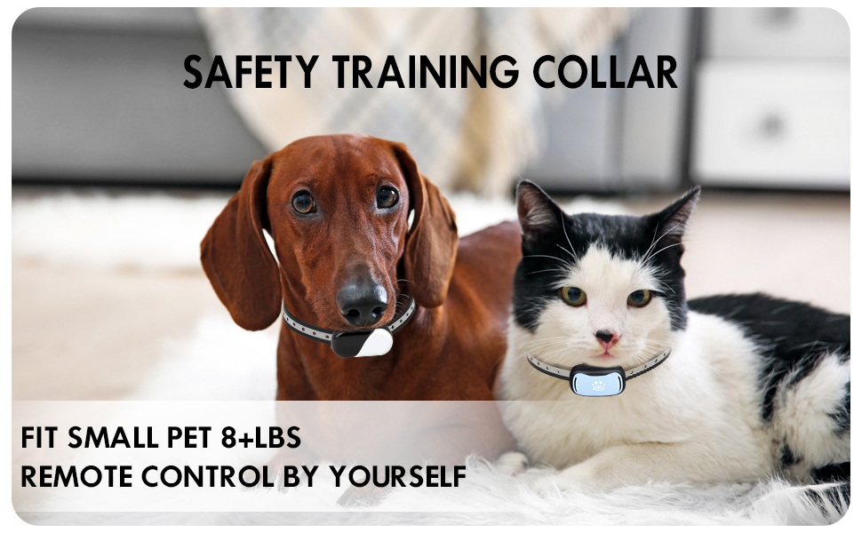 dog shock collar with remote for large dogs