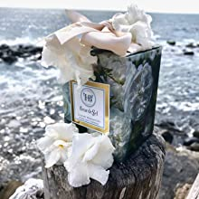 Clean Fragrance, Coastal, Bay, Candle in Ocean, Spa Feel, White English Roses