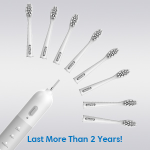 8 Replaceable Brush Heads