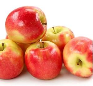 apples, apple tree, pink lady apples
