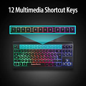 shortcut keys multimedia control