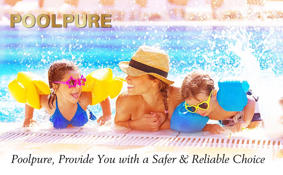 POOLPURE Pool & Spa Filter