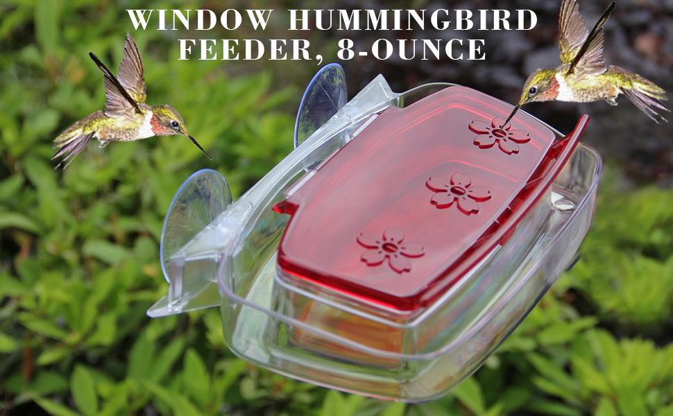 Amazon Com Juegoal Window Hummingbird Feeder 8 Ounce Garden
