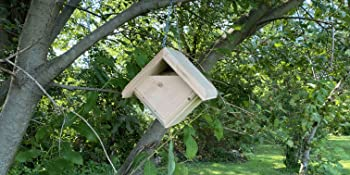Wakefield Bird Houses are made from sustainably-harvested Eastern White Pine Wood for bird safety