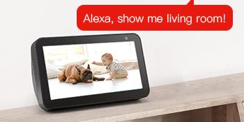 dog cat nanny elder remote watching office shop speaker network video 360°alert ptz pan tilt zoom