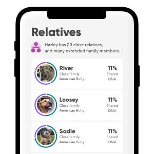 worlds only canine relative finder dog ancestry find your pup's siblings parents and cousins