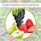 Concentrated anti-oxidants in Tetra Cream by Keya Seth Aromatherapy
