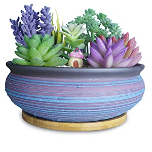 7.7 Inch Succulent Pots