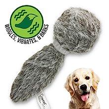 doggie tail