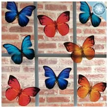 Vibrant Color Set of 8 Butterfly Window Clings to Prevent Bird Strikes on Windows - Bird Safety