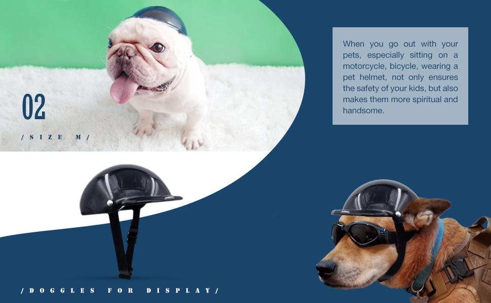dog helmet