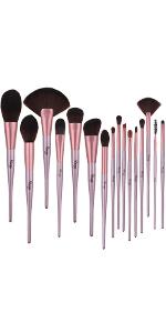 fan makeup Brush
