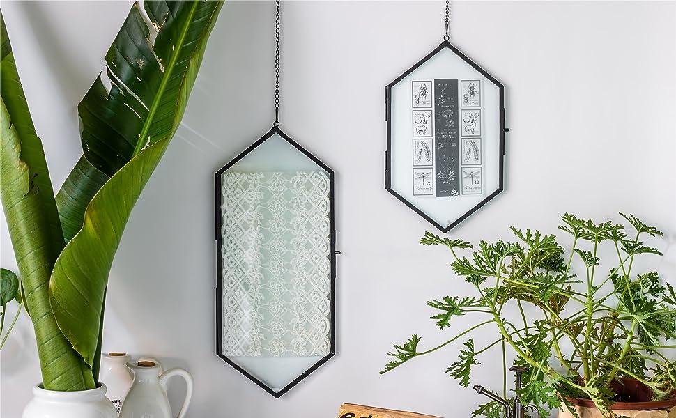 NCYP Large Black Hanging Herbarium Long Hexagon Brass Glass Frame, Double Glass, Floating Frame