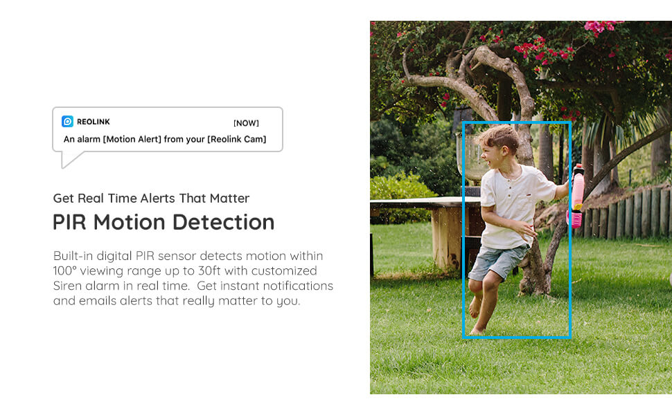 argus eco pir motion detection