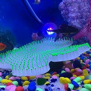 glowing fish aquarium accessories decorations