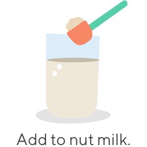 protein powder, organic, vegan, plant-based, chocolate, smoothie, supplements, nut milk