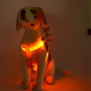 led harness red