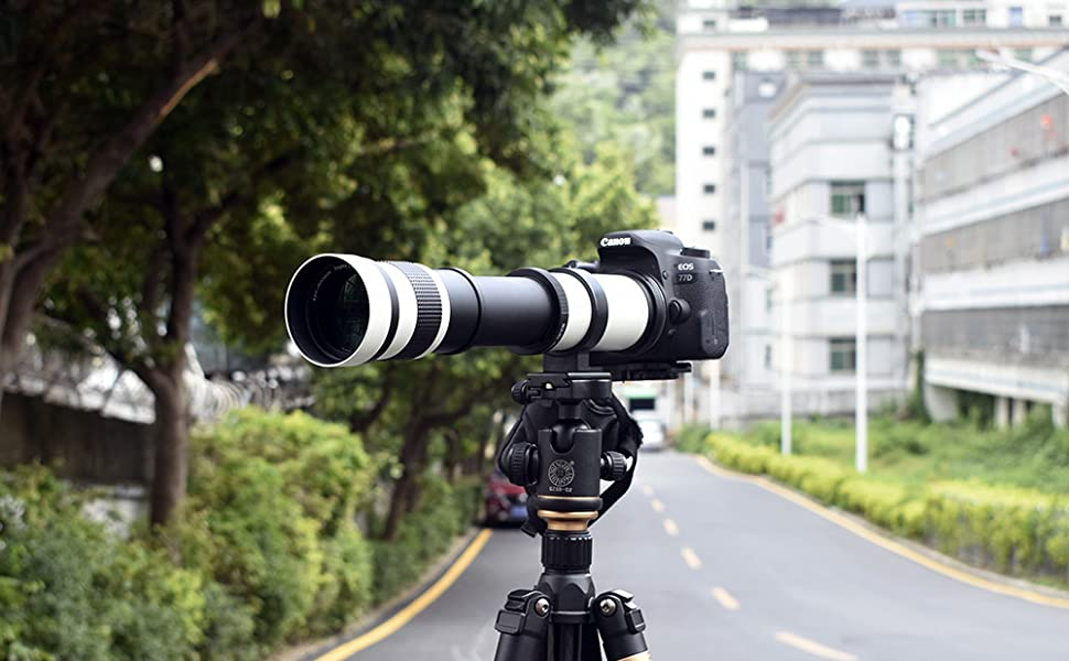 800mm lens on tripod