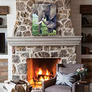 this moment staging living room home decor cozy fireplace sitting area rustic african decoration