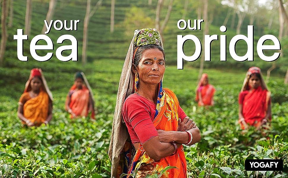 Yogafy, Tea, Green Tea, Darjeeling, Rose, Chamomile, Hibiscus, Mint, Tulsi,
