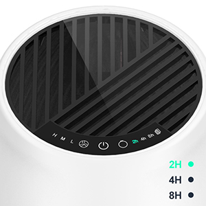 air purifier with timer