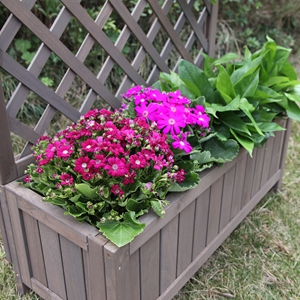 box planter for herbs