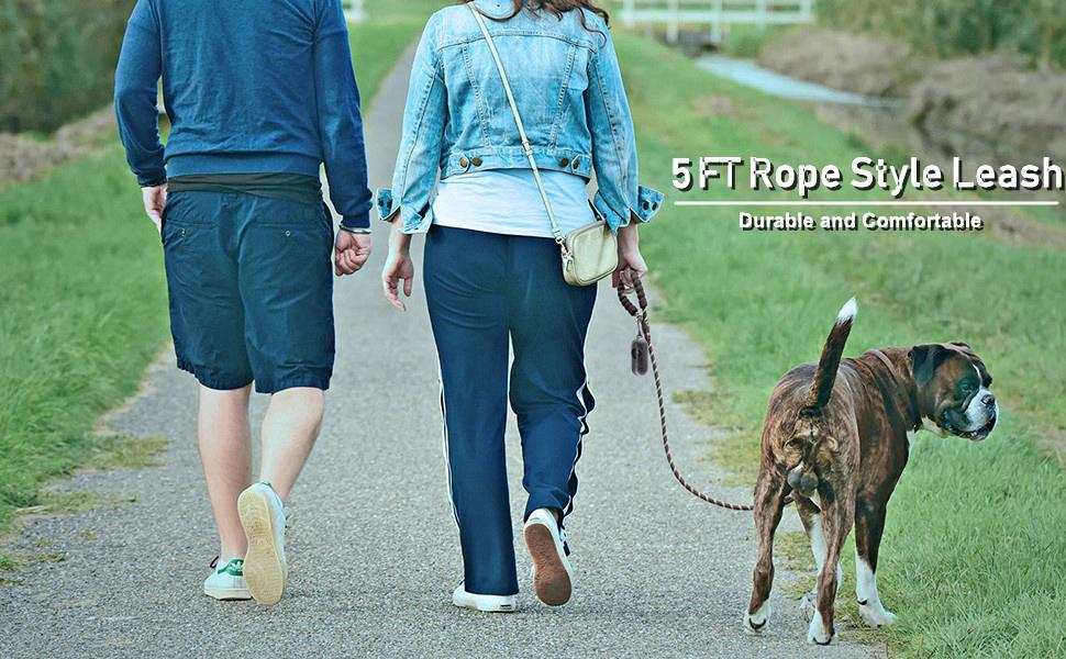 dog leash 2 pack