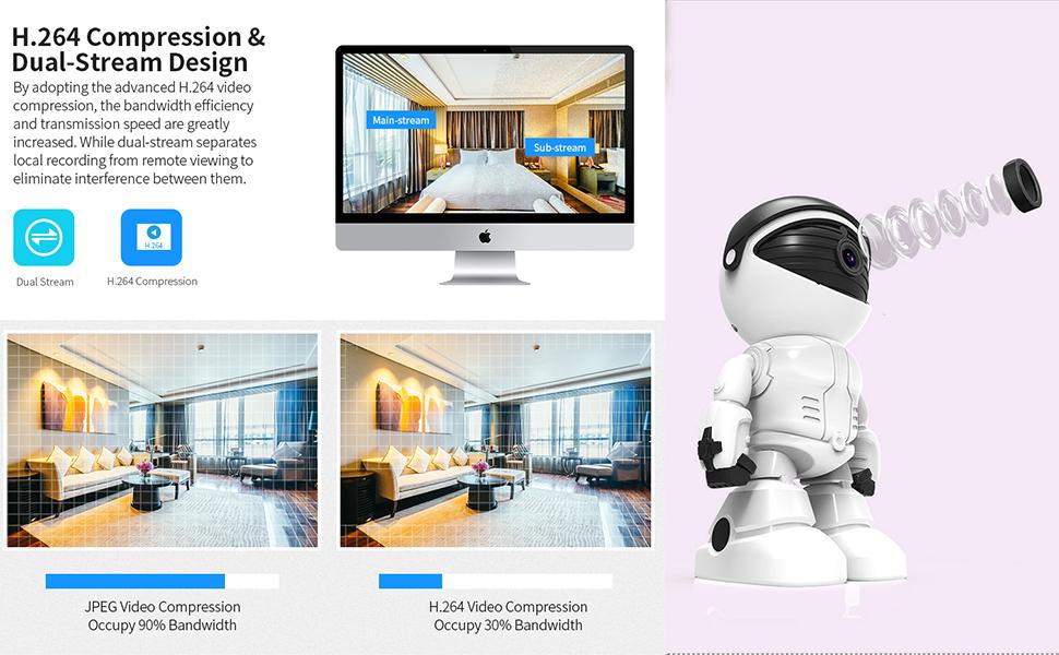 H.264 Compression &Dual-Stream Design
